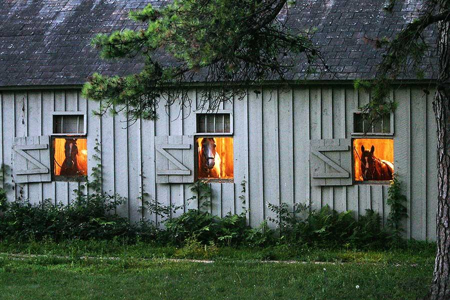 in-barn